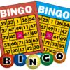 最大5,000ポイントが稼げるちょびリッチ「BINGOゲーム」利用ガイド